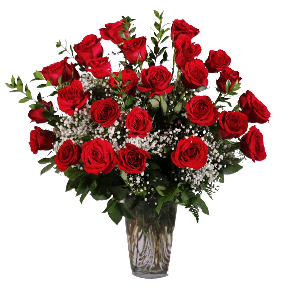 Flower Arrangements El Paso: 2 Dozen Red Roses